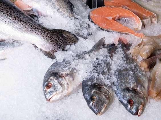 Pierwsza w Polsce wyszukiwarka produktów rybnych ze znakiem MSC