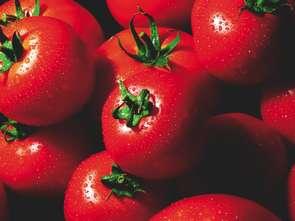 Wraca sprawa sprzedaży żywności wprost od rolników