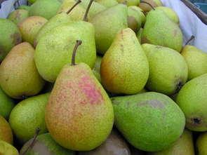 Warzywa i owoce w handlu zagranicznym w 2015 r.