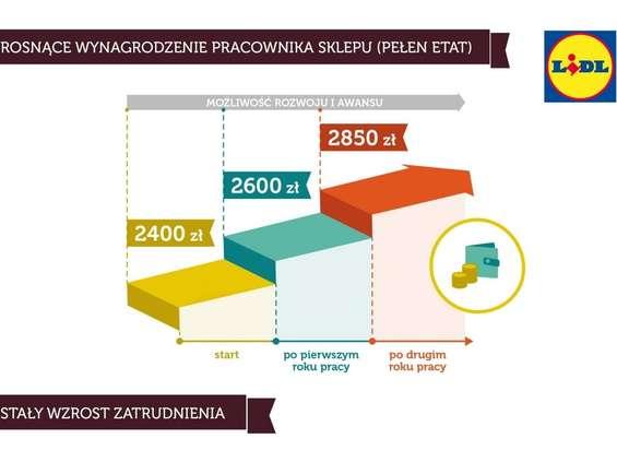 Analiza: jak zarabiają pracownicy Lidla, a jak Biedronki?