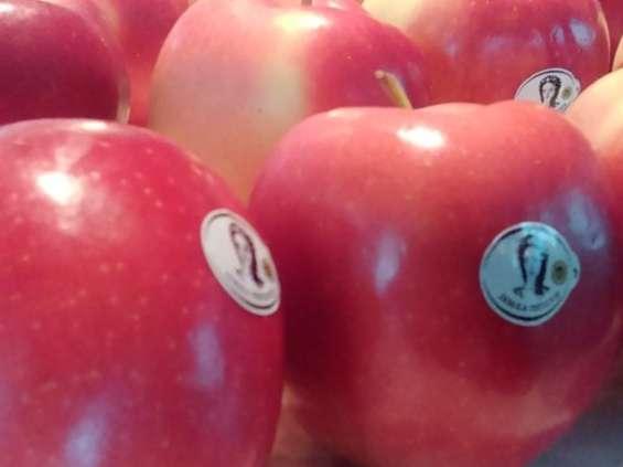 Lidl sprzedał 400 t jabłek w tydzień