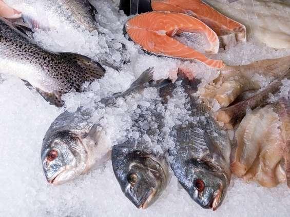 Lidl wzmacnia politykę zrównoważonego rybołóstwa