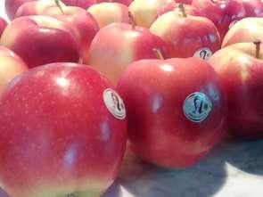 Lidl ogranicza pestycydy w warzywach i owocach