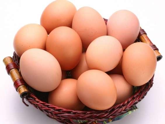 Resort rolnictwa: skazone jaja z Belgii, Holandii i Niemiec nie trafiły do Polski