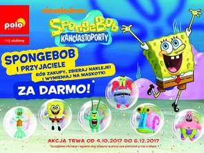 SpongeBob w Polomarkecie