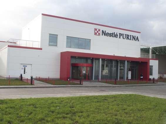 Karma dla zwierząt podbija wyniki Nestlé w Europie Centralnej