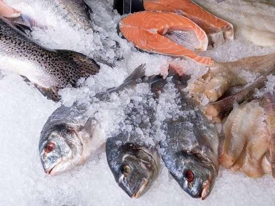 Najgorzej wypadły ryby mrożone