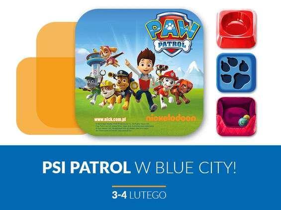 Psi Patrol w Blue City