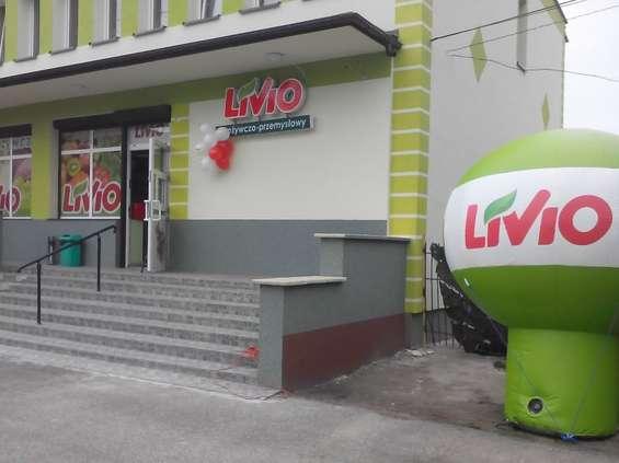 Livio szkoli