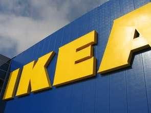 IKEA z propozycją dla wegetarian
