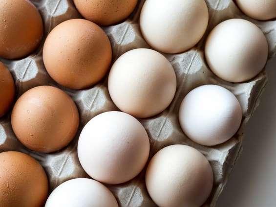 E.Leclerc edukuje o jajach