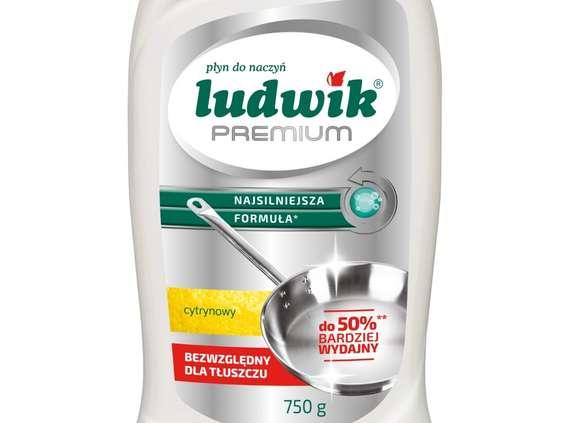 Grupa Inco. Ludwik Premium