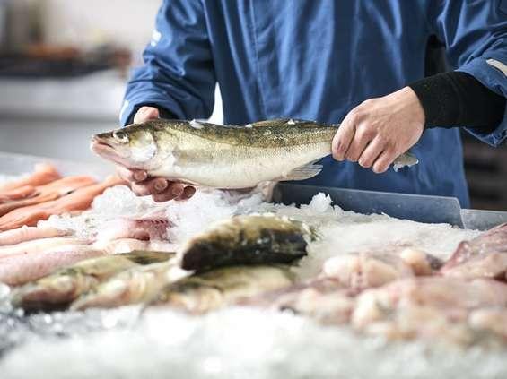 Z praktyki: ryby świeże, bo mrożone