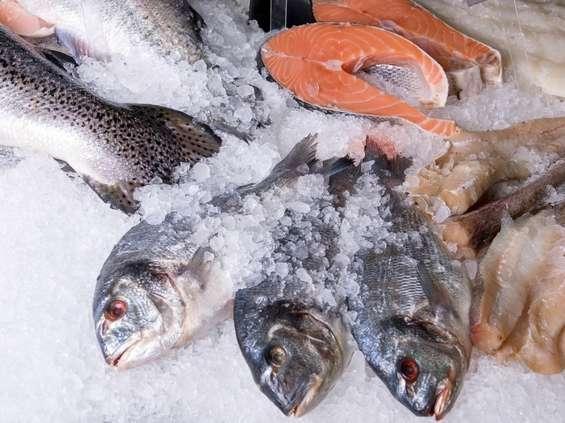 Seko: branża rybna w Polsce ma się nieźle