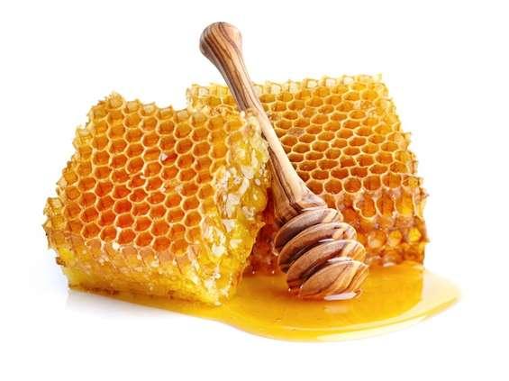 Pszczoły mają głos