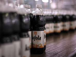 Polski rynek nadal obciąża wyniki Kofoli