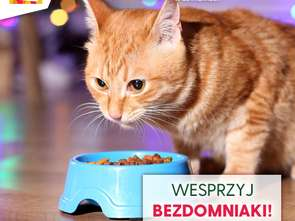"""Galeria Łomianki wspiera """"Bezdomniaki"""""""