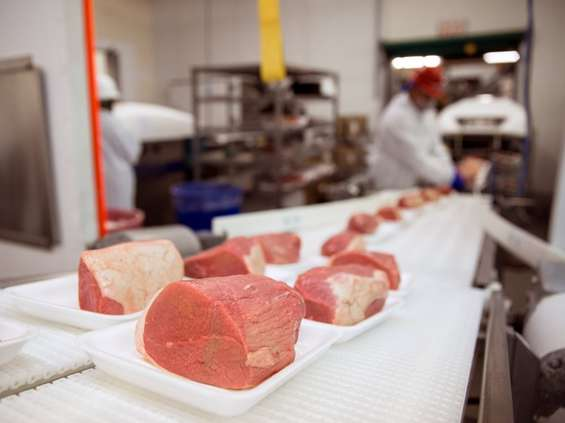 Mięso rusza do boju