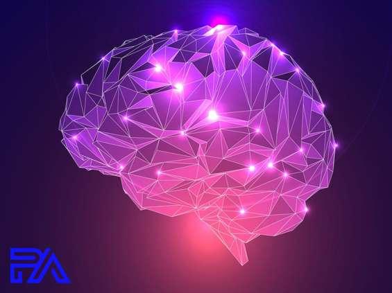 Neuromarketing - klucz do umysłu klienta