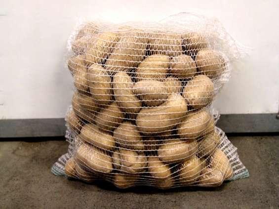 Catania podbija rynek ziemniaka