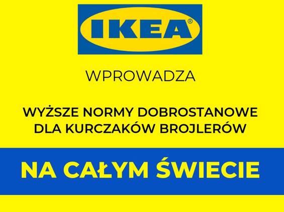 IKEA rezygnuje z brojlerów