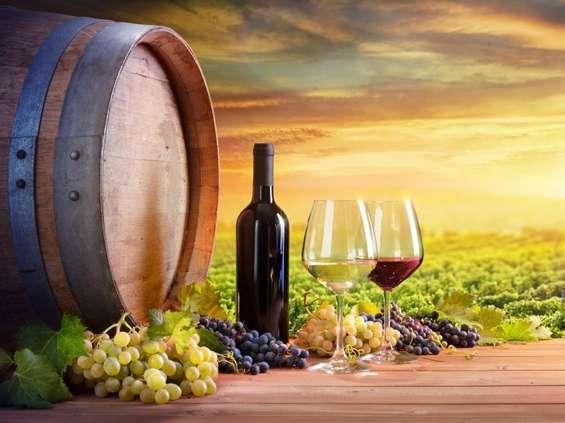 Centrum Wina oferuje wycieczki do winnic z całego świata
