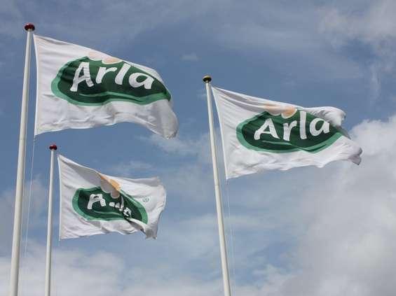 Cały zysk Arla wypłaci rolnikom