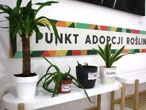 Punkt adopcji roślin w Galerii Łomianki