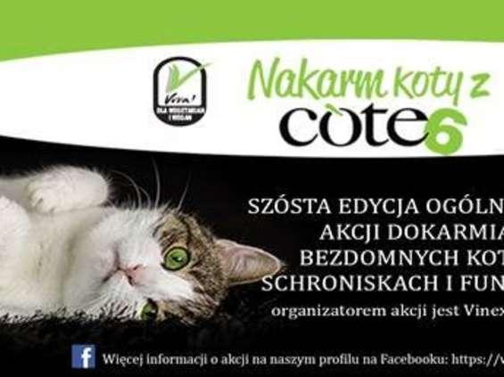 """""""Nakarm koty z Cote"""""""