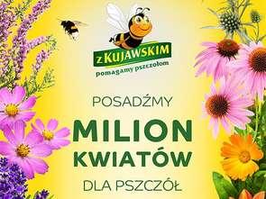 Kujawski dla pszczół
