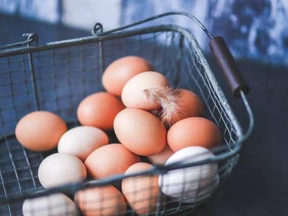 GIS ostrzega: w jajkach znaleziono pałeczki salmonelli