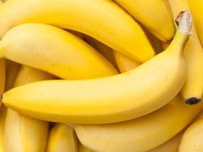 Choroba bananów potwierdzona!