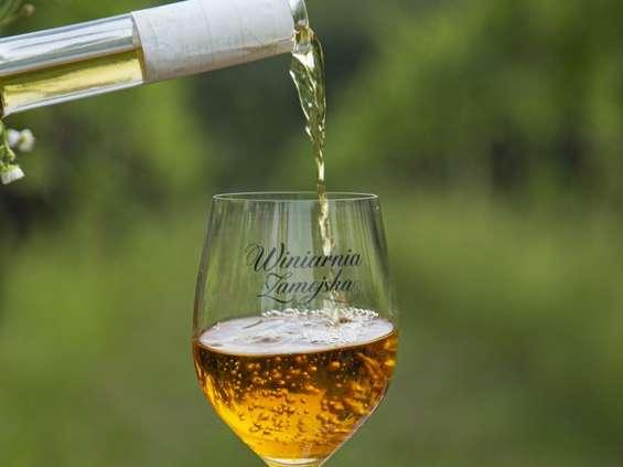 Winiarnia Zamojska - nowa marka polskich win