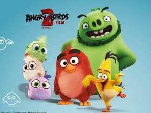 Angry Birds w Galerii Gniezno