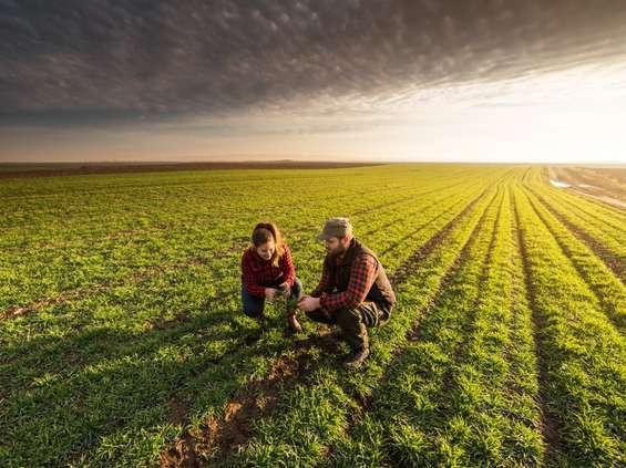 Młodzi nie chcą pracować na wsi. Dlaczego?
