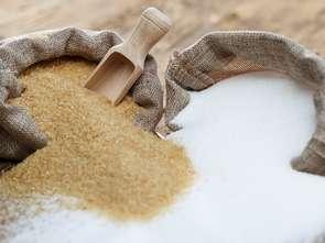 Producenci wytykają błędy w projekcie ustawy cukrowej