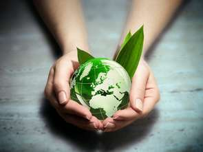 Green Generation - pokolenie, które nie nadchodzi