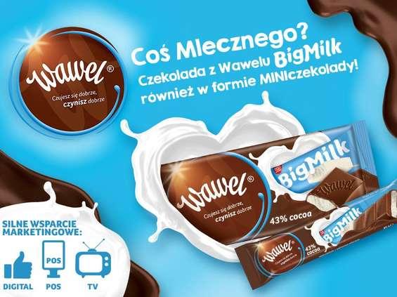 Wawel. Wawel Big Milk