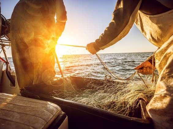 Zrównoważony przemysł rybnystawia czoła pandemii