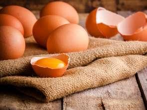 """Ale """"jaja"""" w Aldim"""