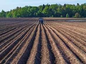 1 mld zł na poprawę sytuacji rolników w związku z Covid-19