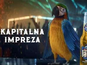 """""""Kapitalna impreza"""""""