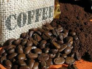Kawa na mieście w czasach pandemii