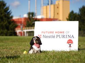Nestlé Purina inwestuje 450 mln dolarów w nową fabrykę