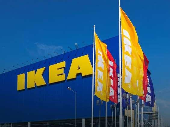 Właściciel IKEI z solidnymi wynikami sprzedaży