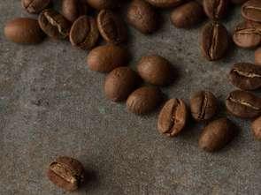 Polacy kupują więcej kawy i ekspresów