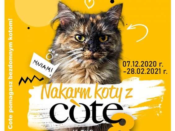 """Wystartowała 8 edycja akcji """"Nakarm koty z Cote!"""""""