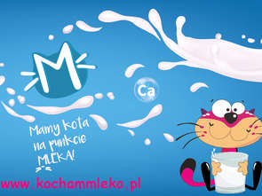 "Rusza kolejna edycja kampanii ""Mamy kota na punkcie mleka"""