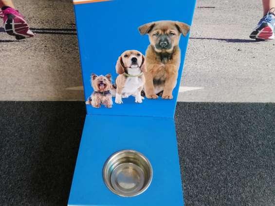 Na zakupy z psem? Są sklepy, w których jest to możliwe