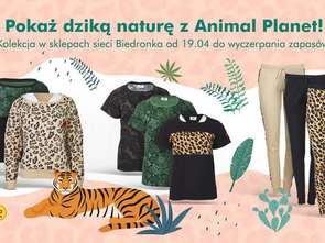 Ubrania z pazurem - wspólna kolekcja Biedronki i Animal Planet